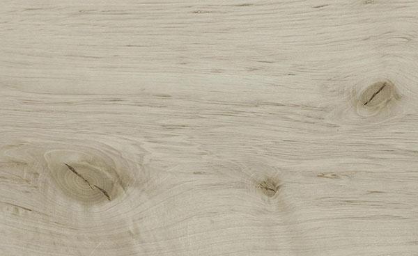H-19 Holz: Hainbuche